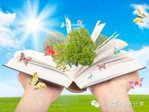 Chinese Book (中文书籍)